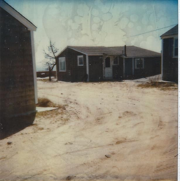 Betsy Speert's Blog: A Cape Cod Ocean Side Cottage