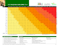 BMI Chart for Medical Scales