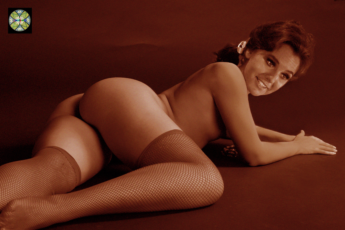 Dawn Wells Nude Fakes