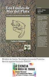 Los Fósiles de Mar del Plata