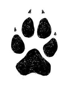 http://4.bp.blogspot.com/-HRGByDuylik/Tgjti_0mlbI/AAAAAAAADtU/y6blENb5ml0/s1600/Wolf_track_1_rh-210.jpg