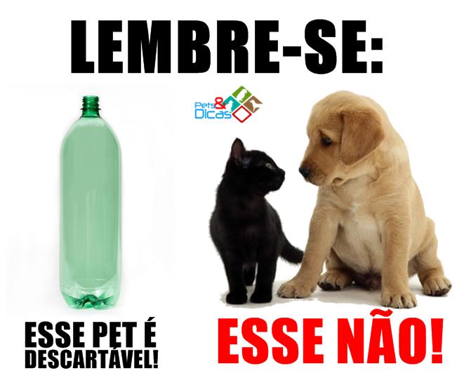 Animal Pet não é descartável