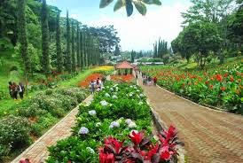 Promo Paket Tour Murah Malang Batu Terbaru 2014 - Taman Bunga Selecta