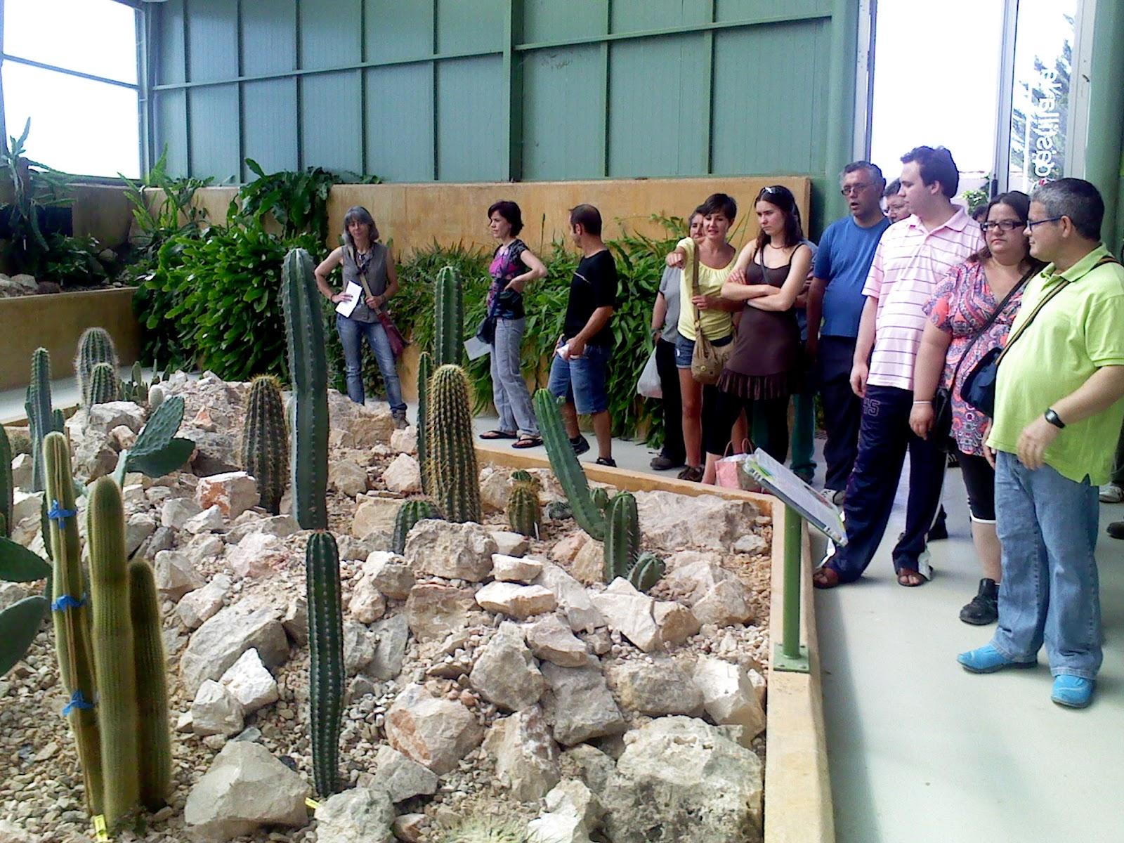 Voluntariado afaeps junio natural visita al jard n bot nico de castilla la mancha - Jardin botanico de castilla la mancha ...