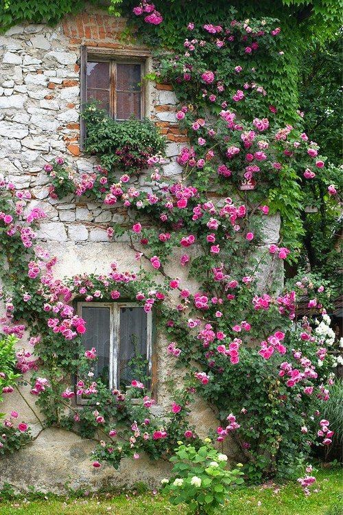 l 39 albero delle dolci idee giardini romantici da copiare