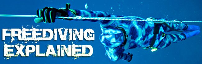 Freediving Explained -  How to Freedive Manual
