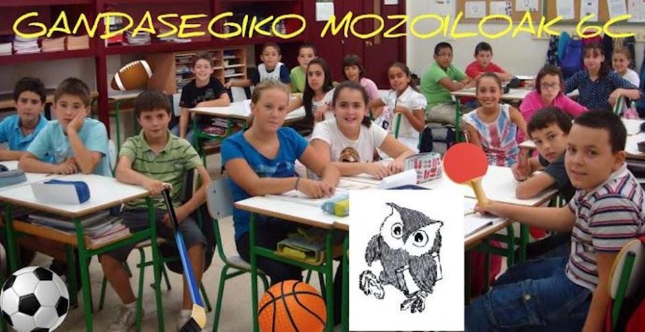 GALDAKAOKO MOZOILOAK 6C