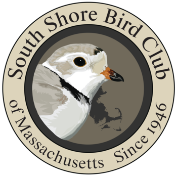 South Shore Bird Club of MA