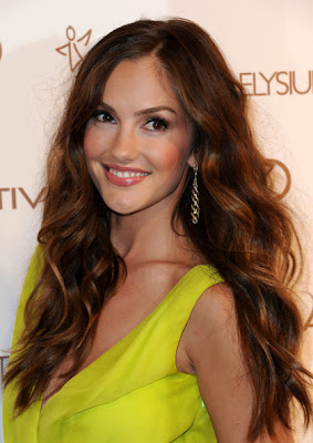 Minka Kelly Long Wavy Cut Hairstyle Lookbook