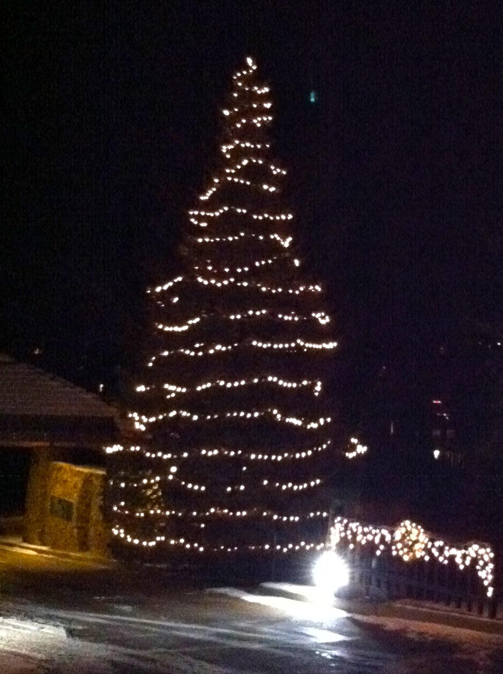 Impression Evergreen: Colorado Christmas