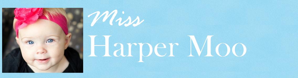 Miss Harper Moo
