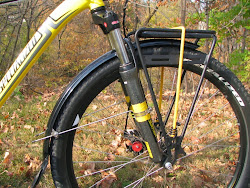 Fender stays attached to fork legs using P Clamps. Note how the stays are single and are not radial at the fender attachment point.