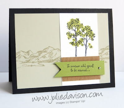Stampin' Up! In the Meadow Masculine Card #stampinup 2016 Occasions Catalog www.juliedavison.com