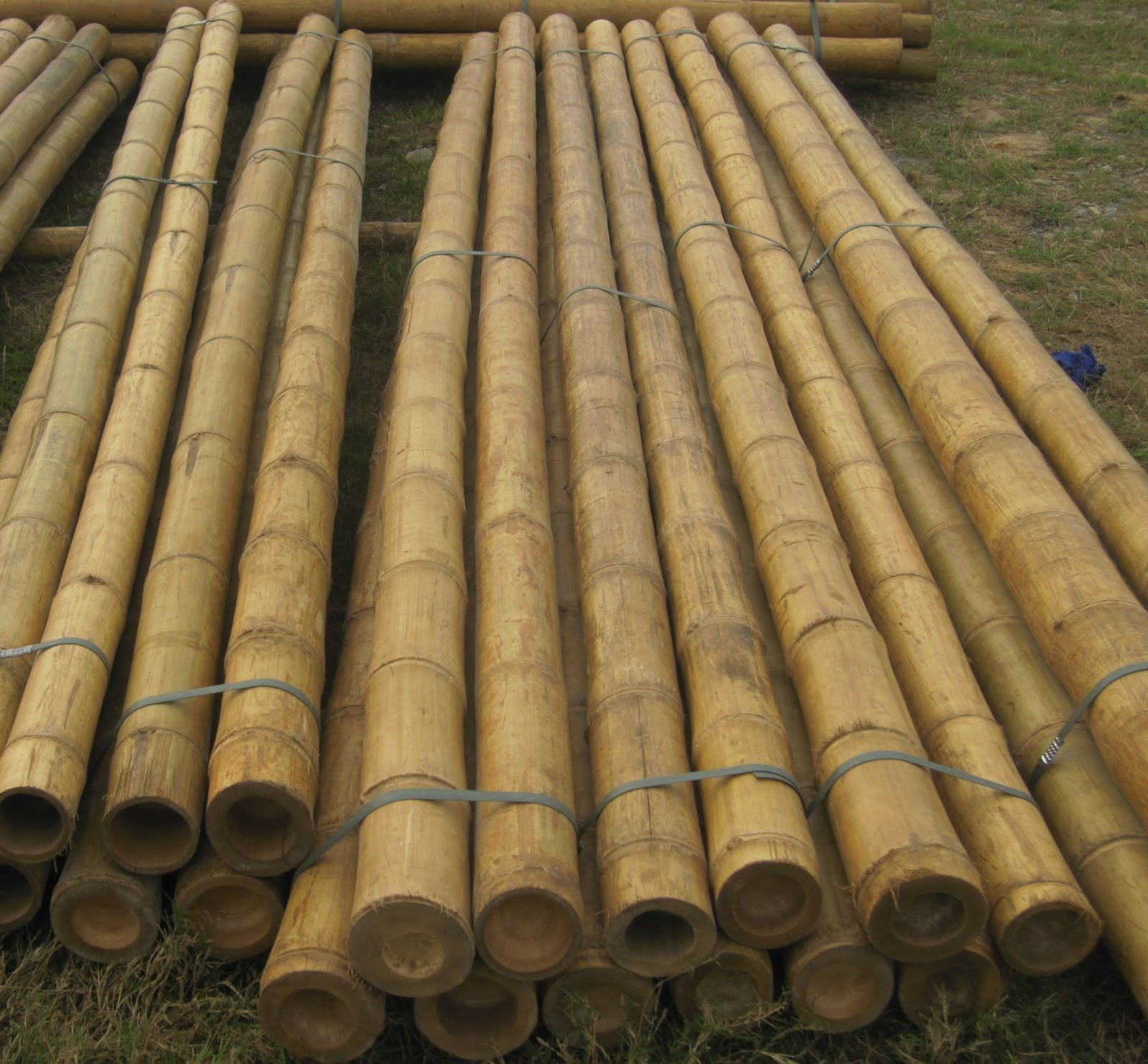Quality bamboo and asian thatch 12 ft wholesale solid for Decoration sticks
