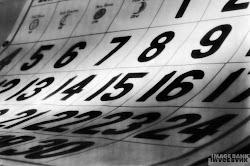Calendário de actividades
