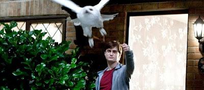 'Tempos difíceis estão por vir, Harry' - Faltam 30 dias para 'Relíquias da Morte - Parte 2' | Ordem da Fênix Brasileira