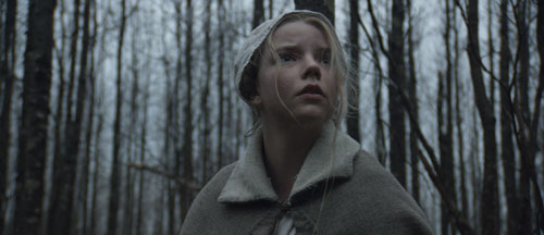 The Witch Movie Trailer and Poster