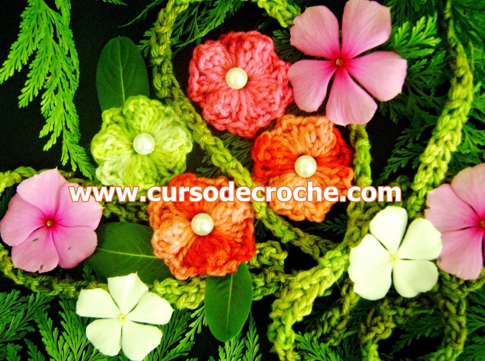 flores em croche dvd 5 volumes com edinir-na na loja curso de croche com frete gratis