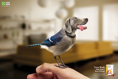Creative Animal Photomanipulation Seen On www.coolpicturegallery.us