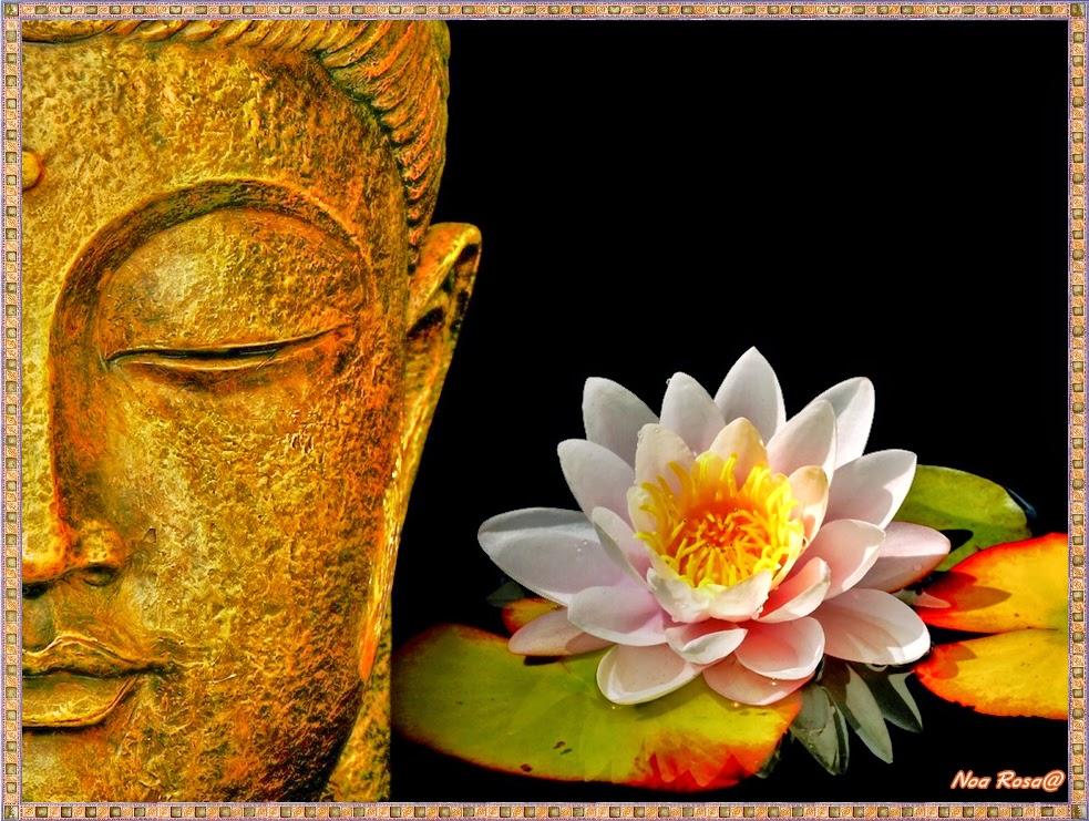 Todos Somos Uno en Amor y Unidad: 365 Meditaciones Semanales Tao Deng Ming  Dao #1-7 de Marzo 2015