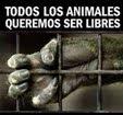 TODXS LXS ANIMALES QUEREMOS LIBERTAD