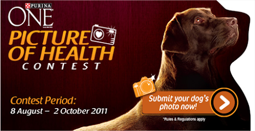 Purina One 'Picture of Health' Contest