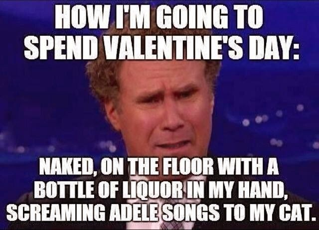 if you're spending valentine day alone meme - Morably — Best Will Ferrell memes 12 photos
