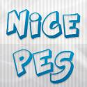 Nice PES