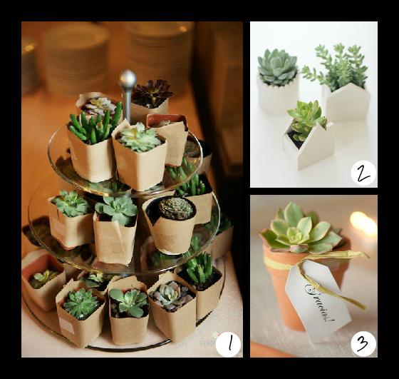 ideas_regalos_comunion_plantas_Efimerata