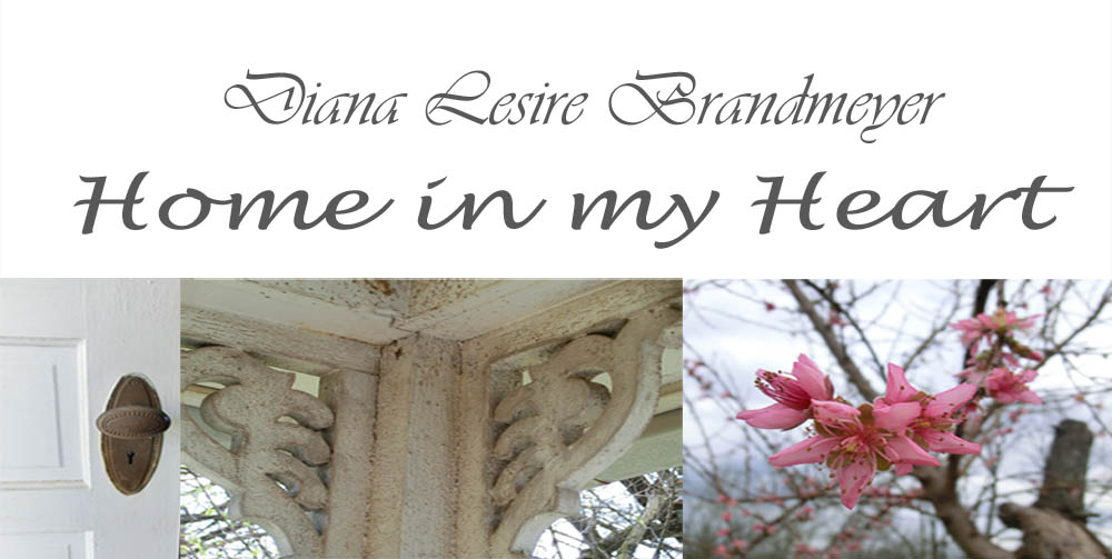 Diana Lesire Brandmeyer&#39;s Blog- Home in My Heart