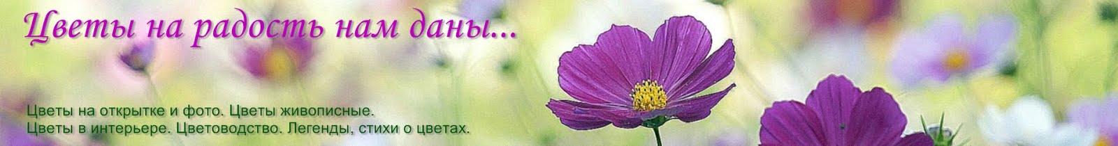 Цветы на радость нам даны...