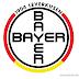 Escudo do Leverkusen é redesenhado por ilustrador americano. O que achou?