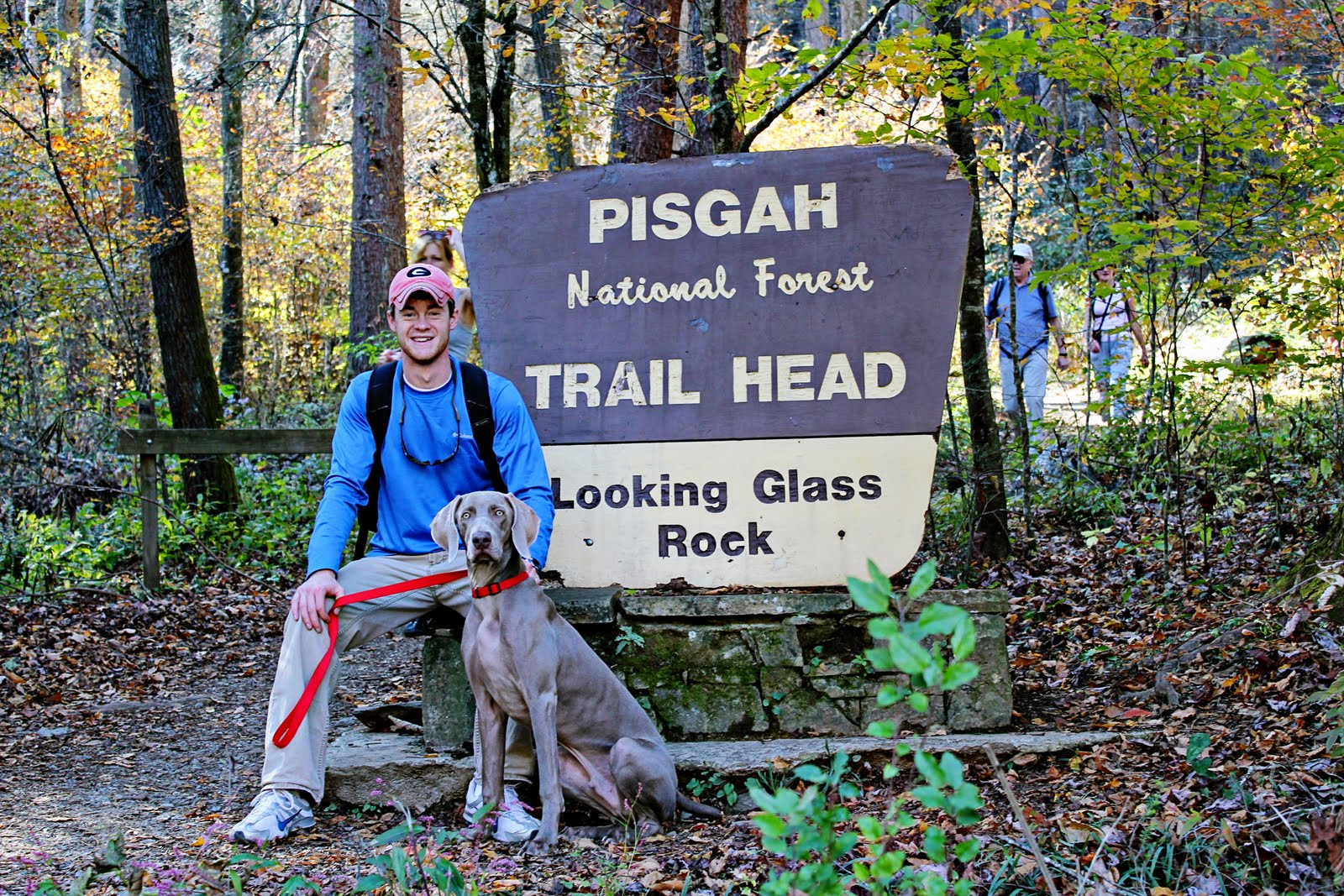 pisgah forest senior personals Pisgah national forest is ranked #4 out of 9 things to do in asheville, nc see pictures and our review of pisgah national forest.