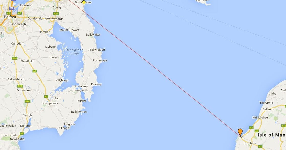 Northern Ireland Black Headed Gull Study Hat Trick Of