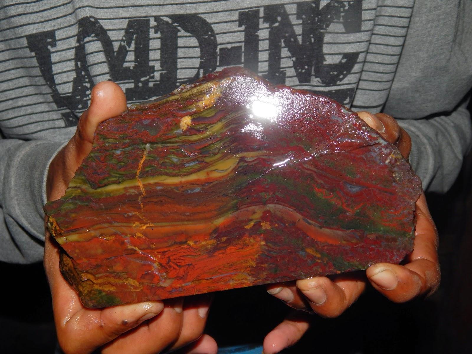 Bongkahan Panca Warna Macan Berdarah
