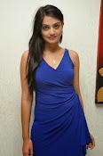 Nikitha Narayan glam pics in blue-thumbnail-9