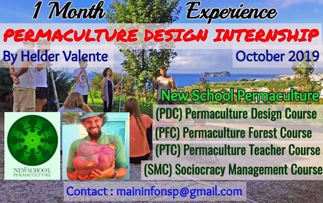(PDI) 1 Month Permaculture Design Internship