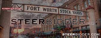 WWW.STEERBIDDER.COM