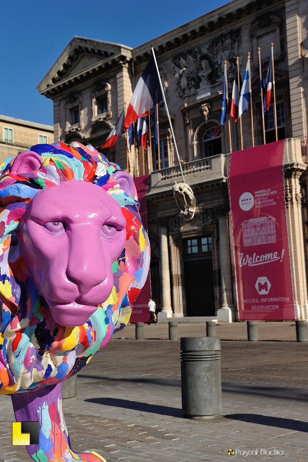 Lion rose devant la mairie de Marseille photo blachier pascal