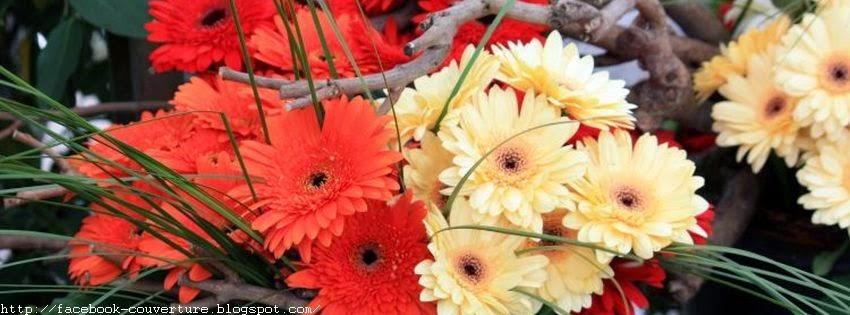 Jolie couverture facebook fleur