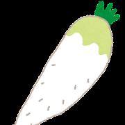 大根のイラスト(野菜)