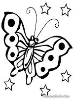 Gambar Kupu-kupu dengan sayap yang indah