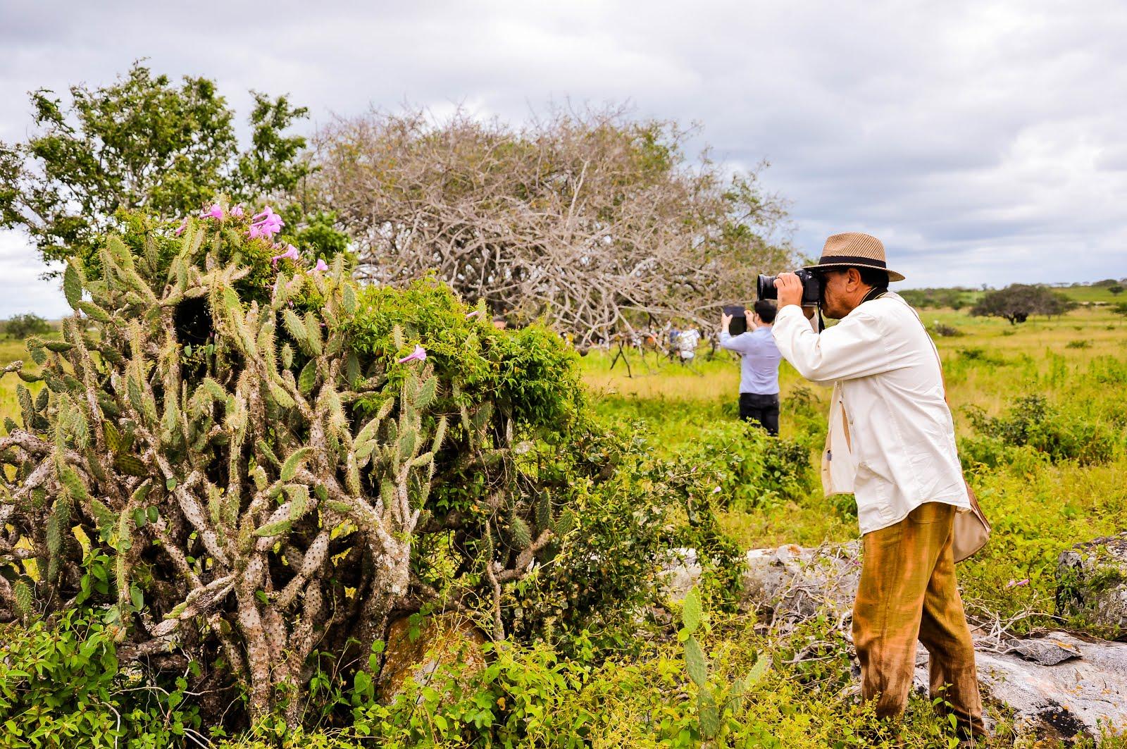 FOTOGRAFANDO NA FAZENDA MARANDUBA