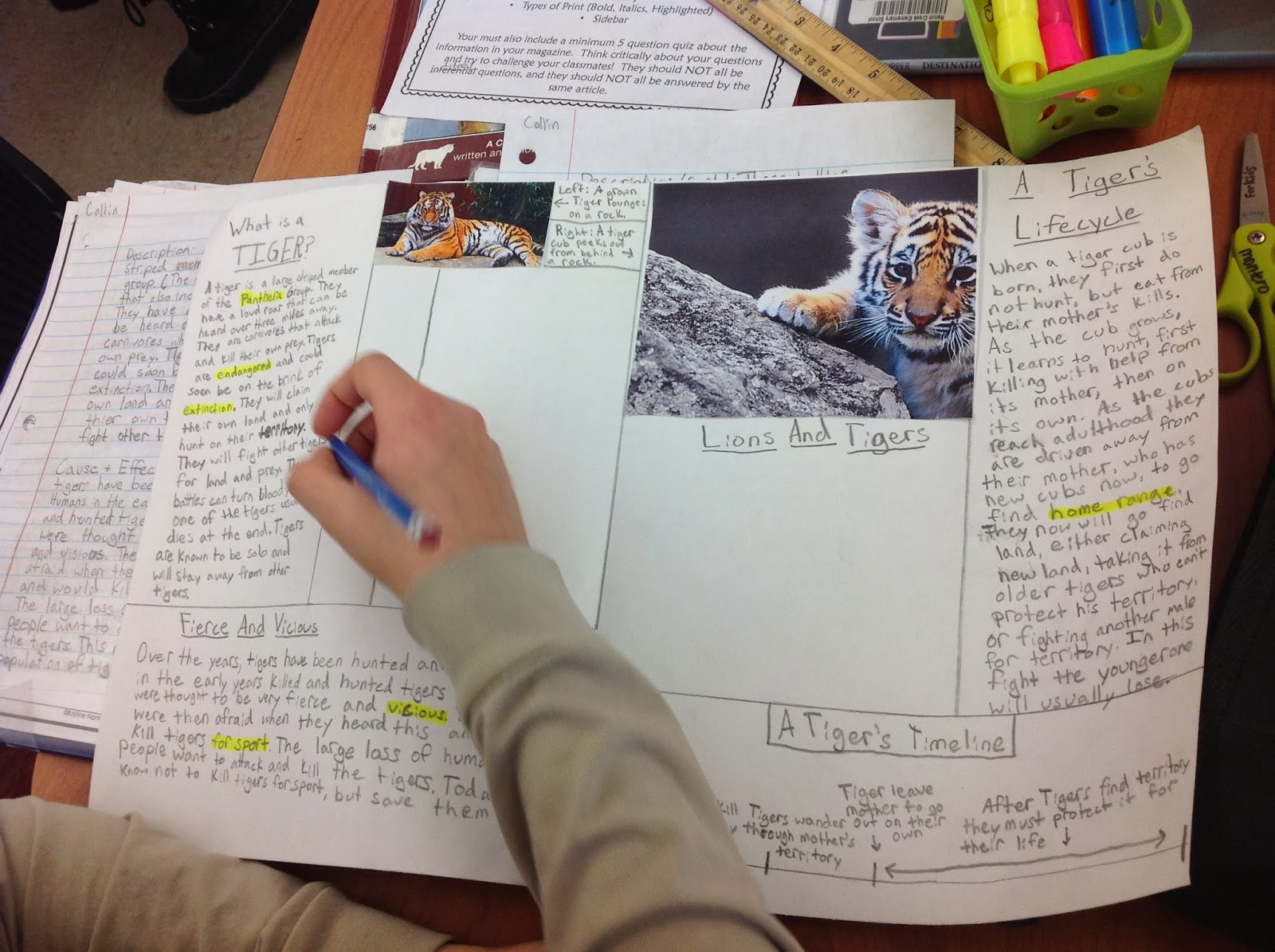 nonfiction book report projects for middle school