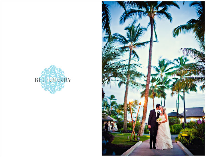 Maui Westin Wedding Photography