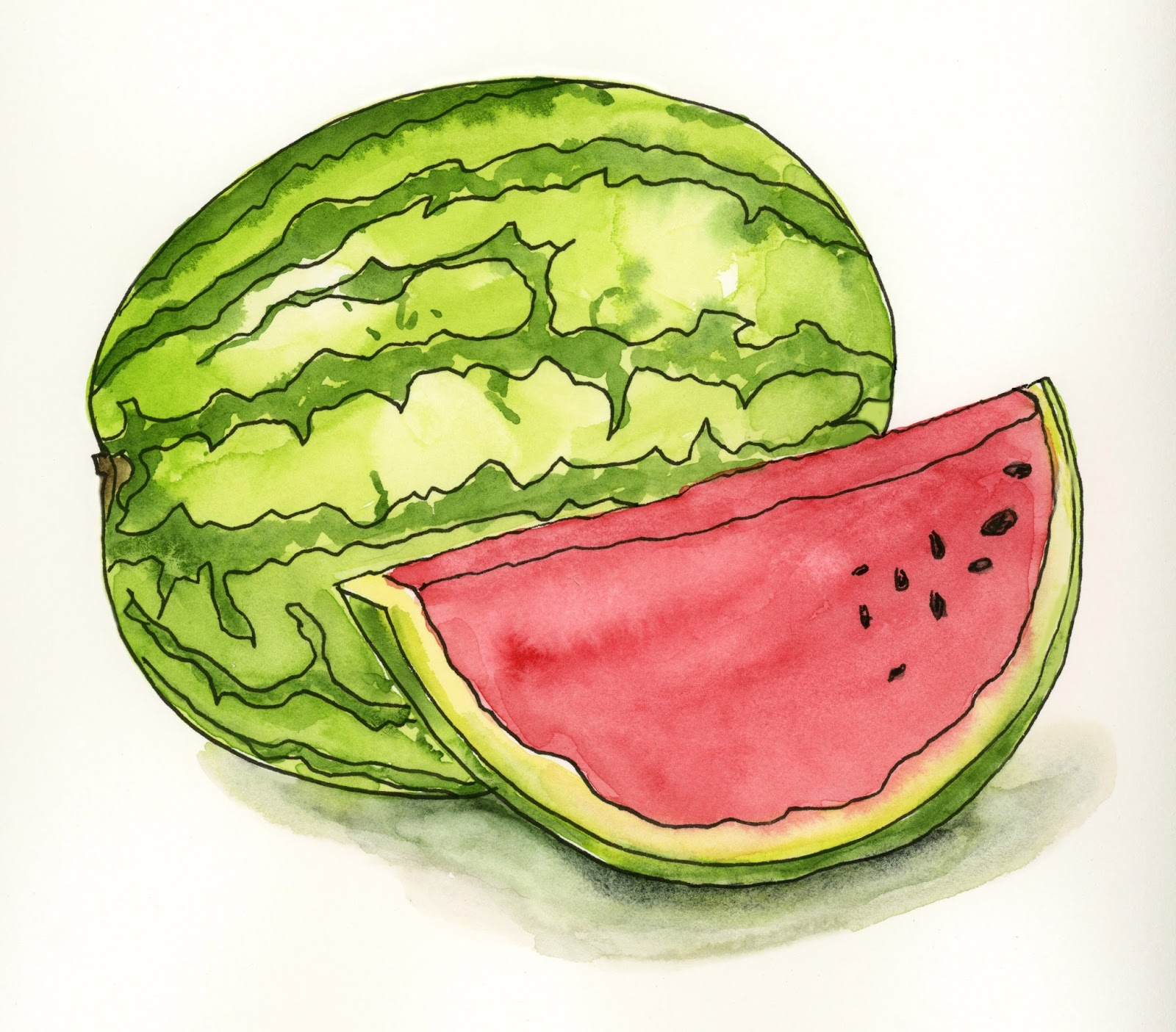 Watermelon drawing