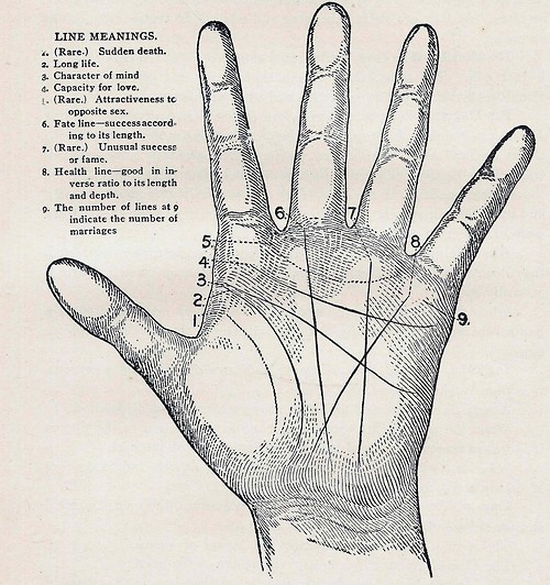 Drawing Lines Meaning : Destiny in the palm of your hand histories things to come