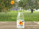 Portakal Suyu Hazırla Oyunu