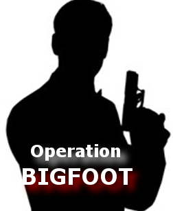 Bigfoot spies