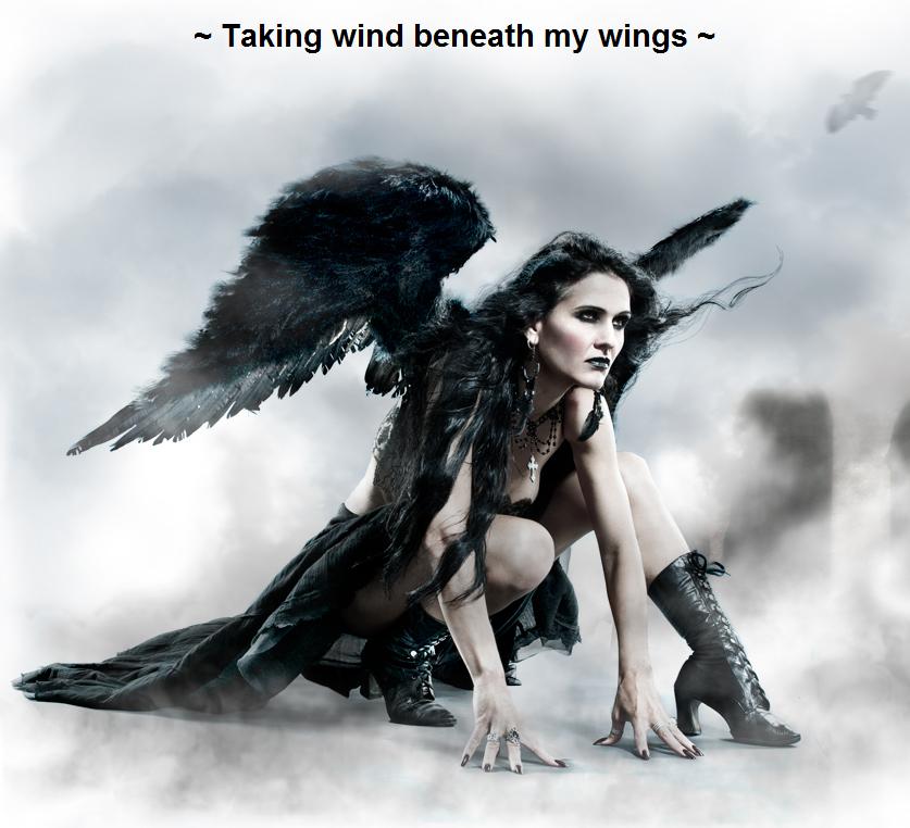 ~ Taking wind beneath my wings ~